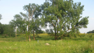 Land Trust Alliance Blog: Right Antidote, Right Time